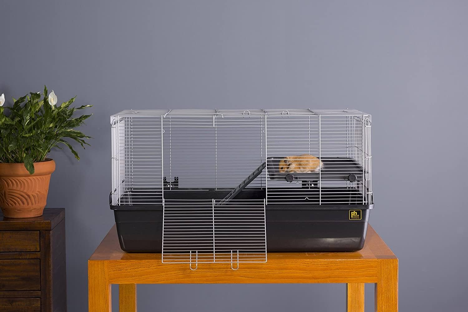 Hamster Cage Prevue Pet Products 528-Amazon