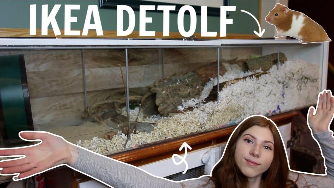 Budget Ikea Detolf Hamster Cage by Victoria Raechel