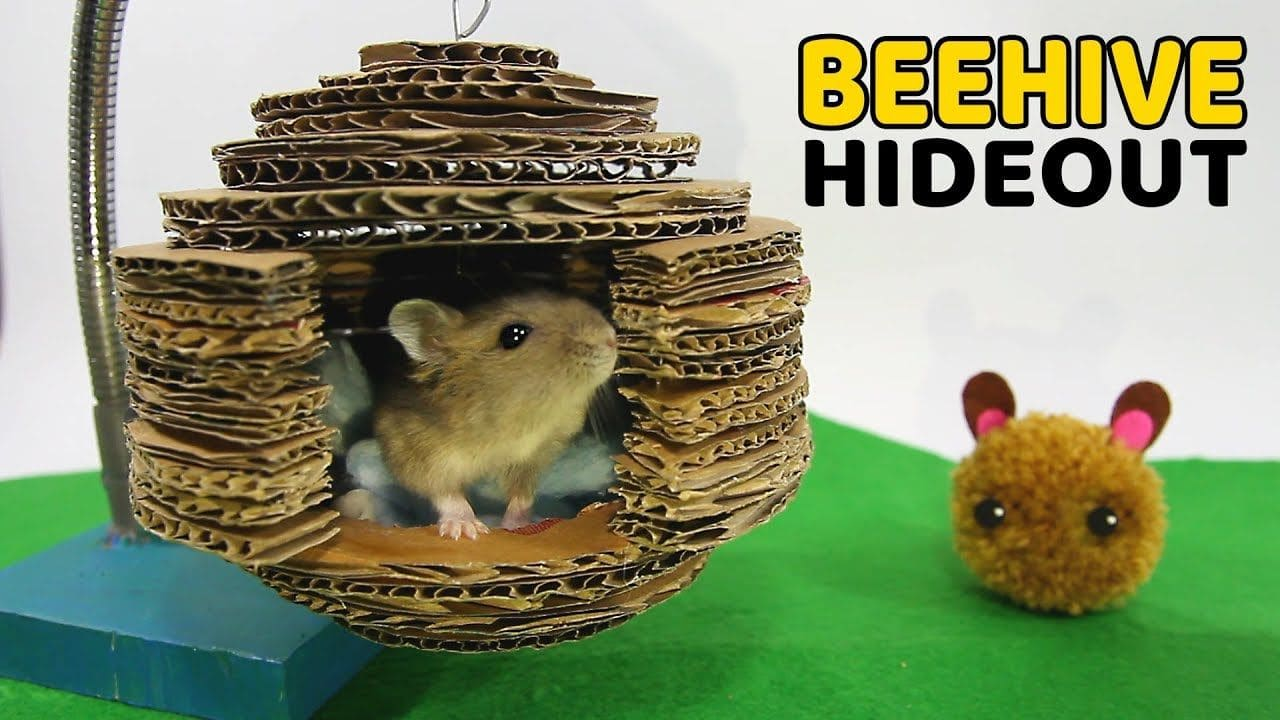 Cardboard Beehive Hideout on Pinterest