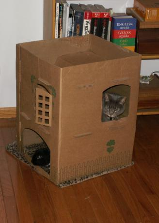 Cardboard Cottage DIY Chinchilla Toy Inspiration from Cats & Rabbits & More