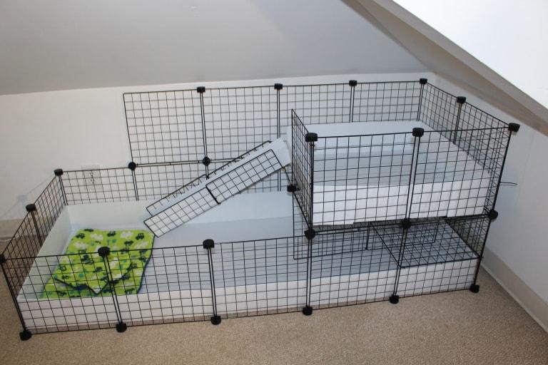 DIY C&C Cage by Alexandria's Animals