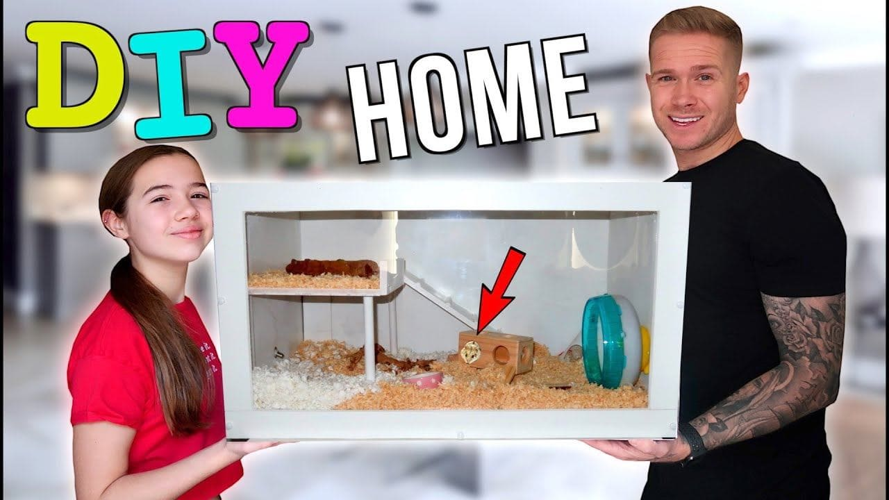 Dad V Girls DIY Hamster Cage