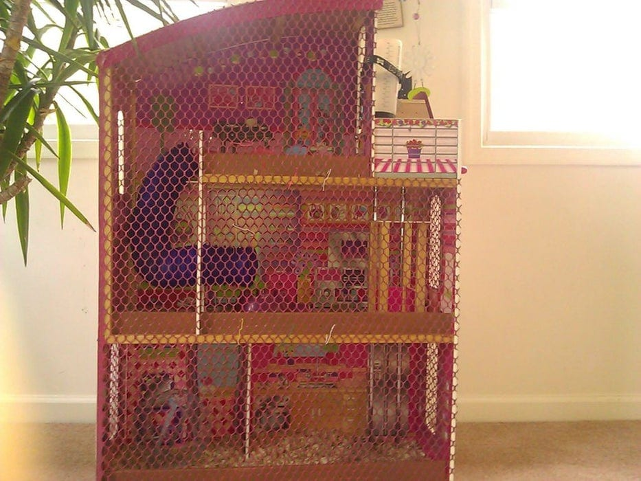 Guinea Pig Mansion From Instructables