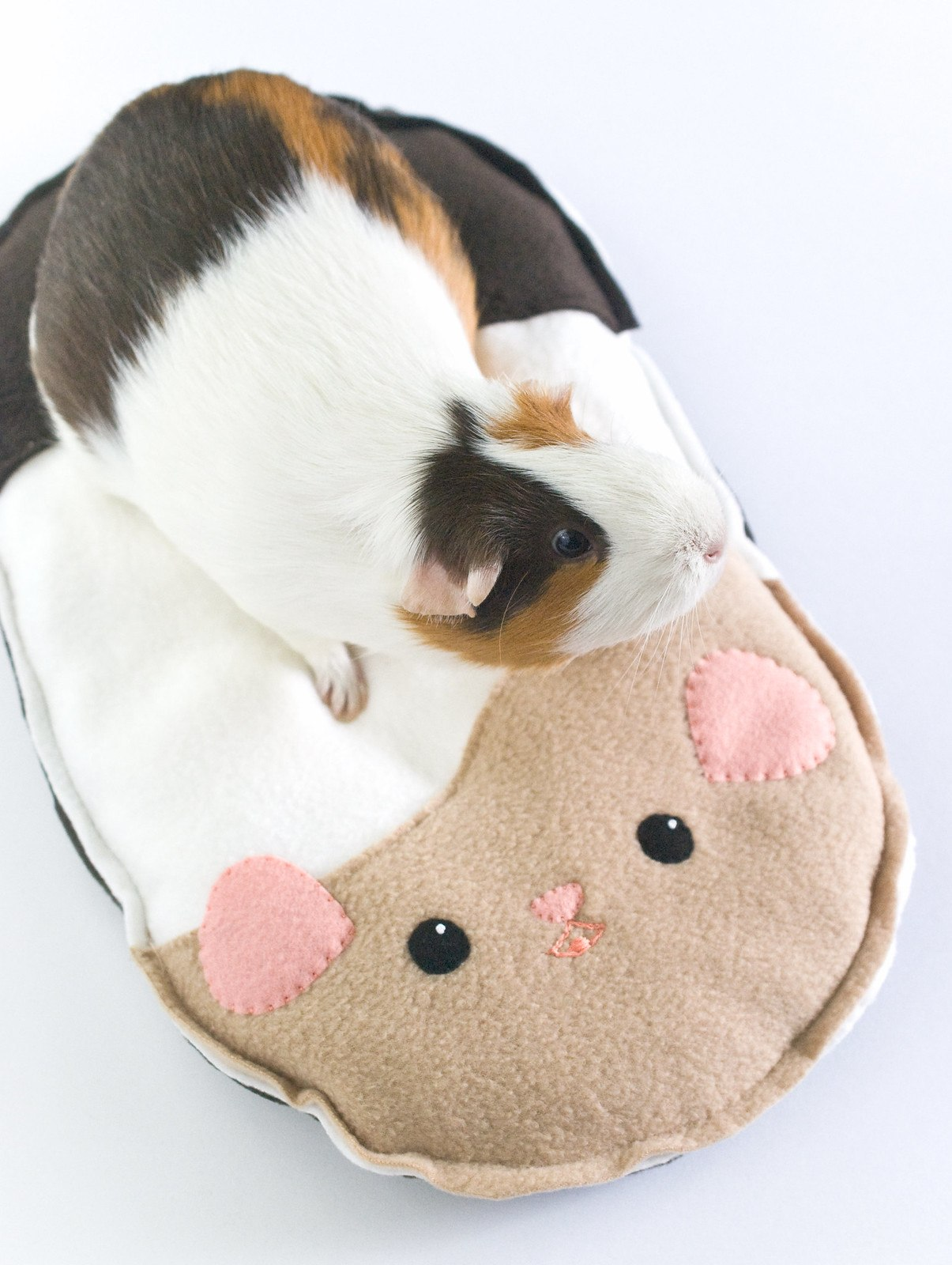 Piggie Shaped DIY Guinea Pig Bed Plans from Wild Olive