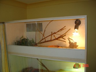 Simple DIY Reptile Enclosure Plans from Aussie Pythons