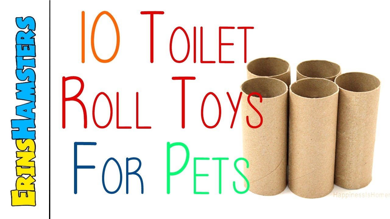 Ten Toilet Paper Tube DIY Chinchilla Toy Plans from Erins Animals