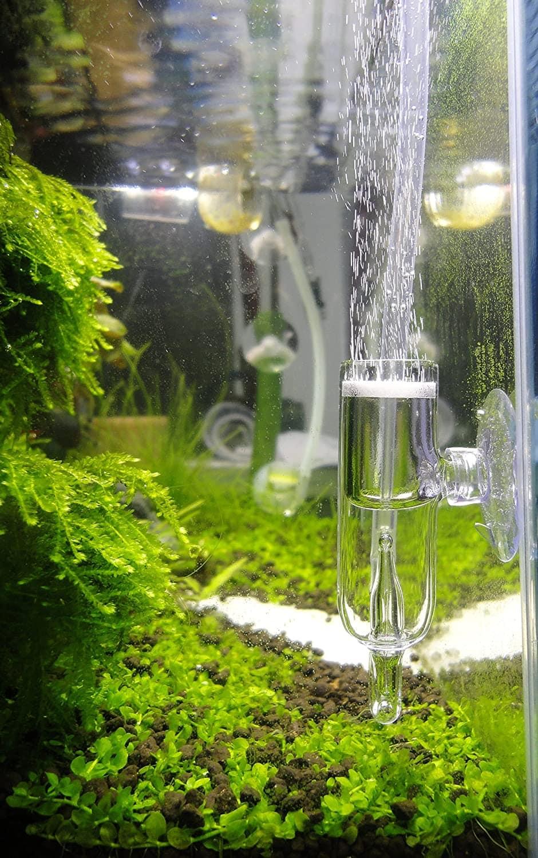 JARDLI Pollen Glass CO2 Diffuser inside aquarium