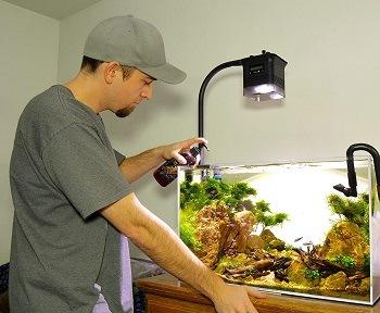 Man fertilizing aquarium plants