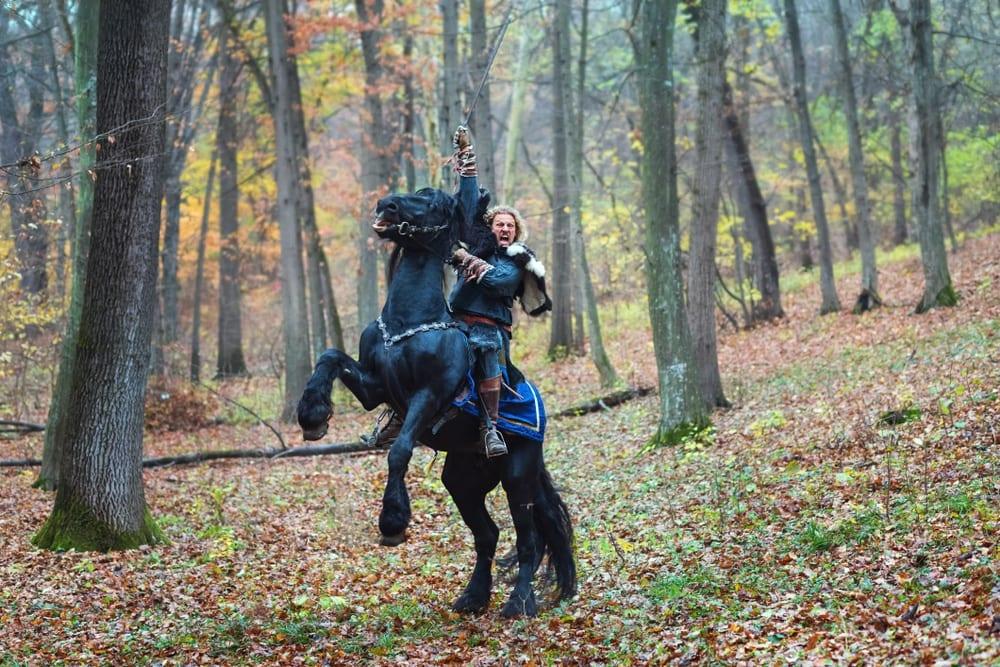 fighting horse LOTR
