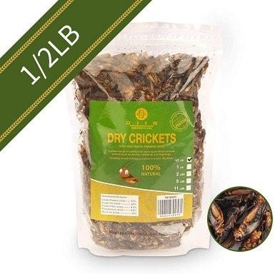 Diig Dried Crickets