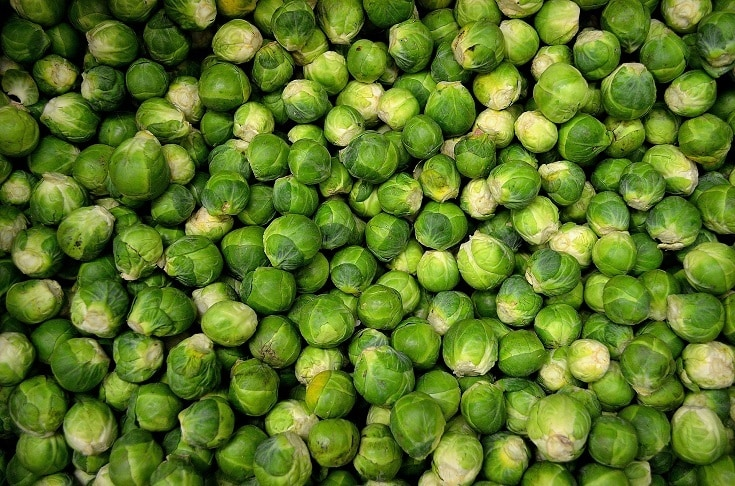 Healthy Brussel Sprouts
