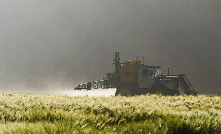 plants and pesticides