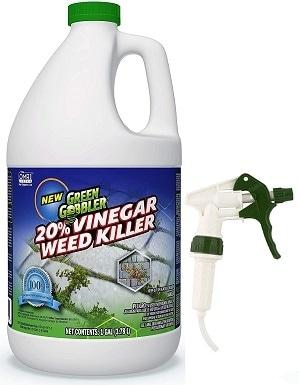 2Green Gobbler Vinegar Weed & Grass Killer