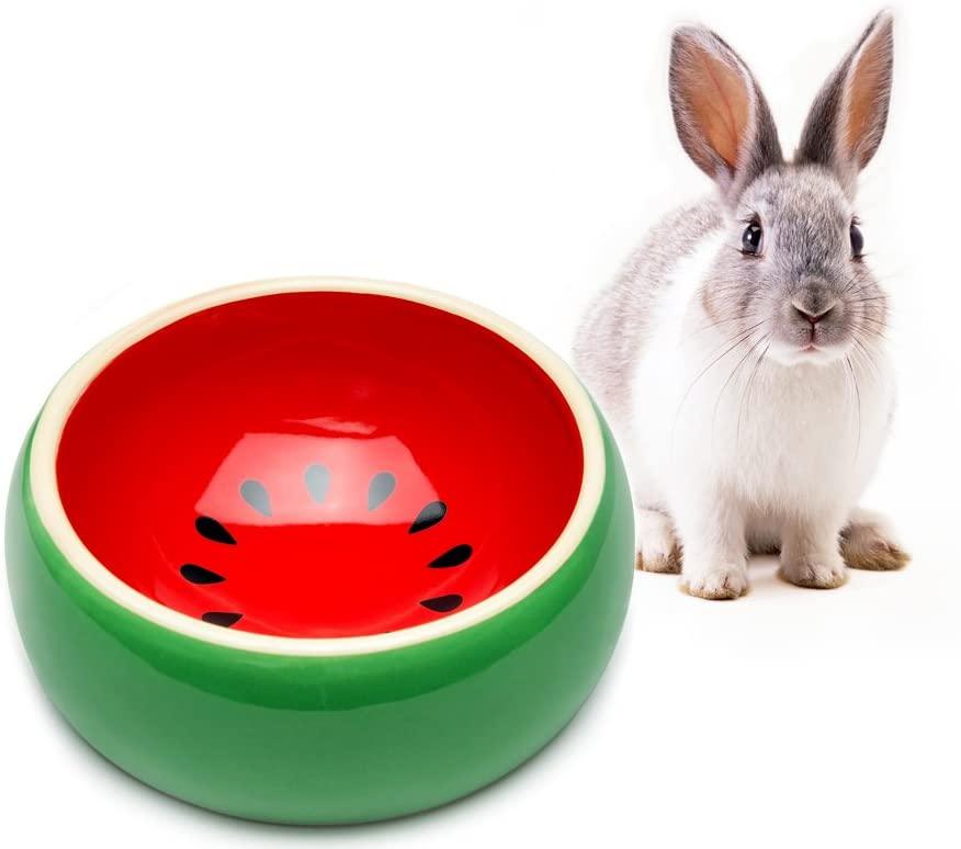 food bowl 1