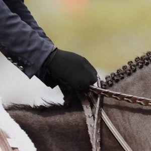 Best Horse Riding Gloves
