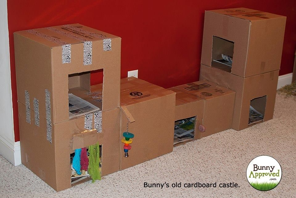 Cardboard Castle- Great for People that Want Something Creative and Free- From Pinterest