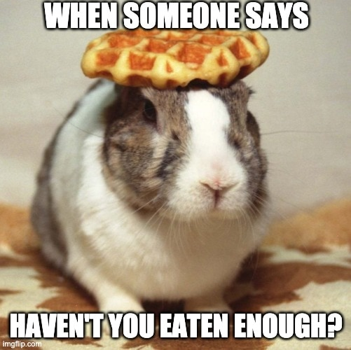 waffle rabbit meme