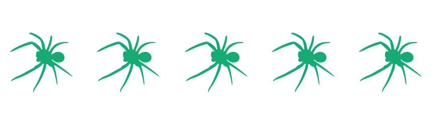 divider-spider