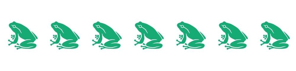 divider- frog