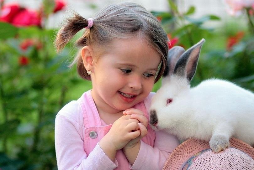 girl-rabbit-pixabay