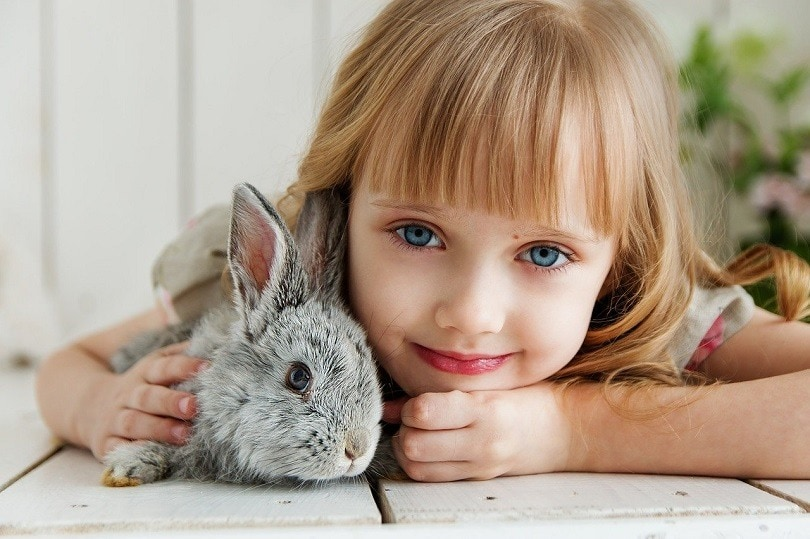 rabbit-bonding-baby-pixabay