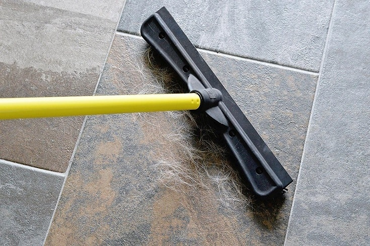 FURemover Extendable Pet Hair Removal Broom