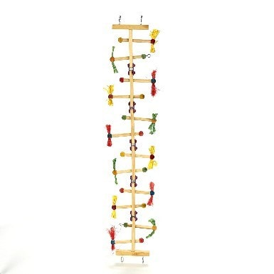 Kaytee Forage-N-Play Ladder