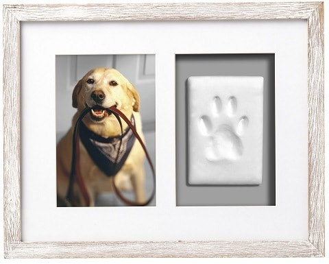 Pearhead Pawprints Wall Picture Frame