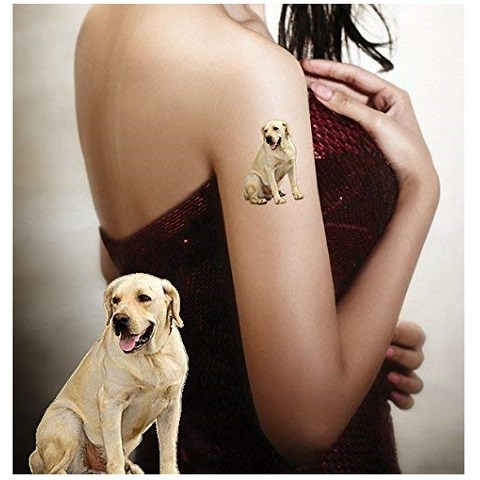 Temporary Tattoos Pet Tattoos