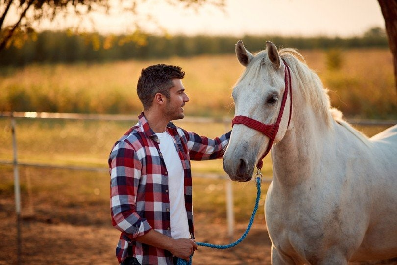 Young smiling man and horse