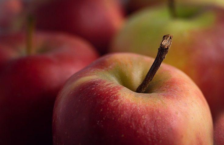 apple close up shot