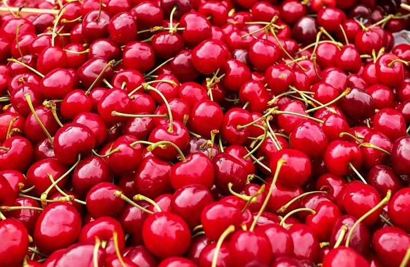 cherry-pixabay