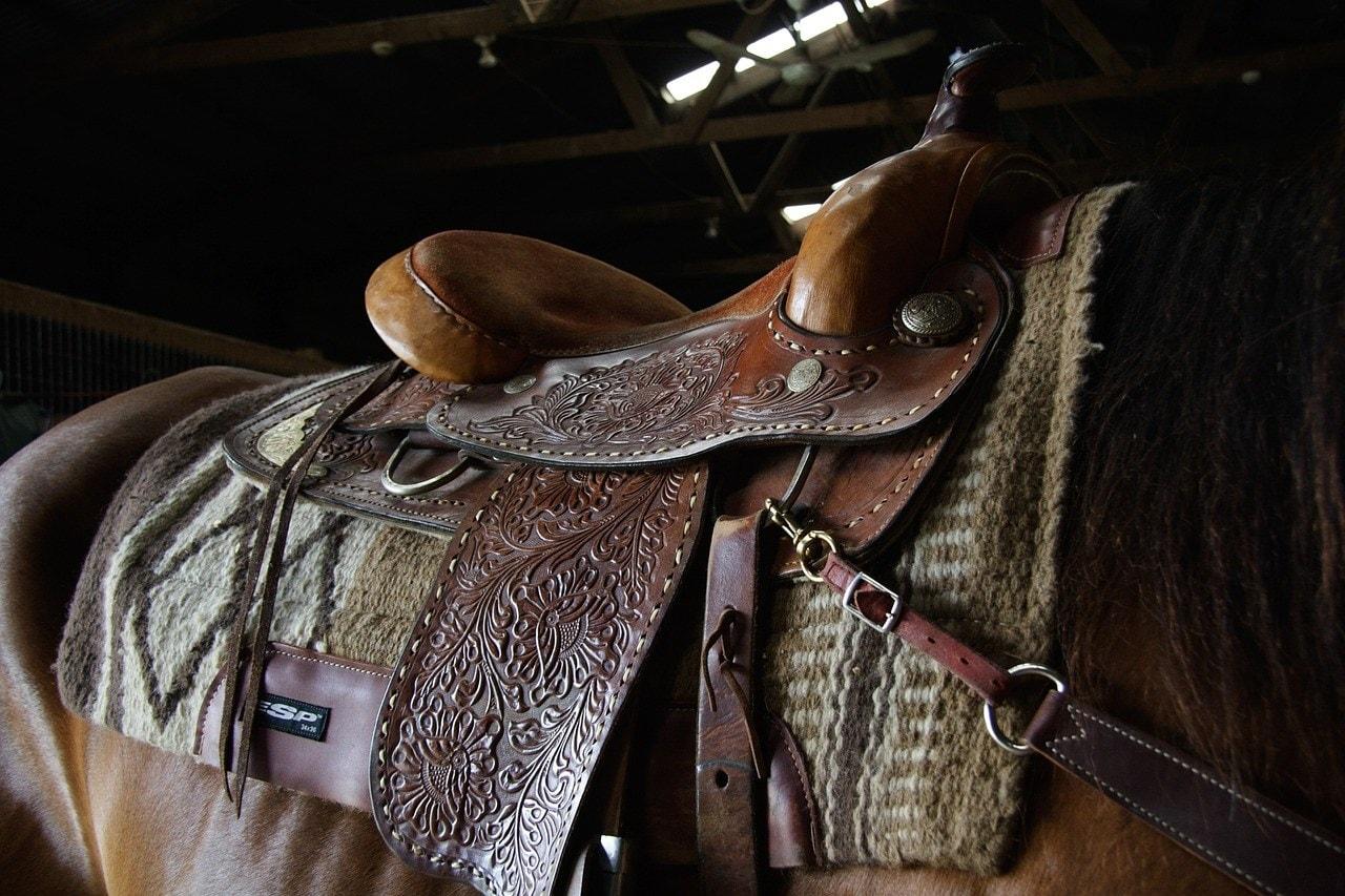 close up western saddle on horse