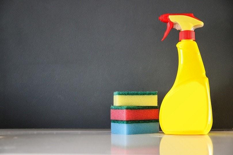diswashing cleaning-pixabay
