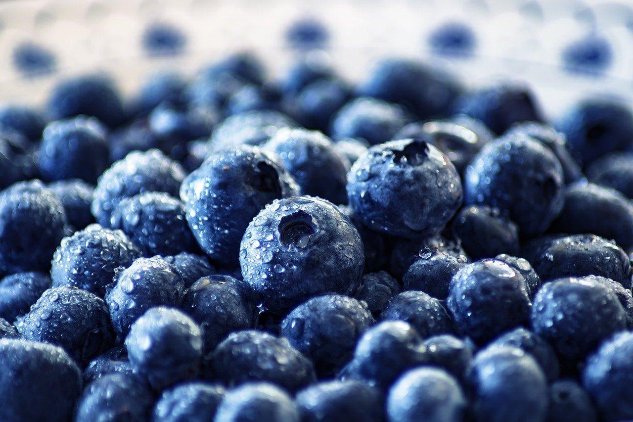 freshly washed blueberries