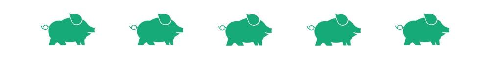 pig divider