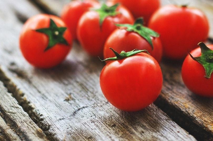 tomatoes_Lernestorod, Pixabay