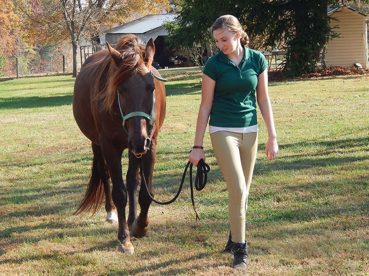 woman guiding a tennessee walking horse
