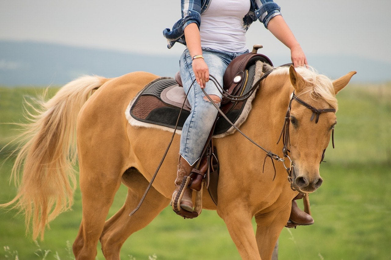 woman riding in a palomino horse