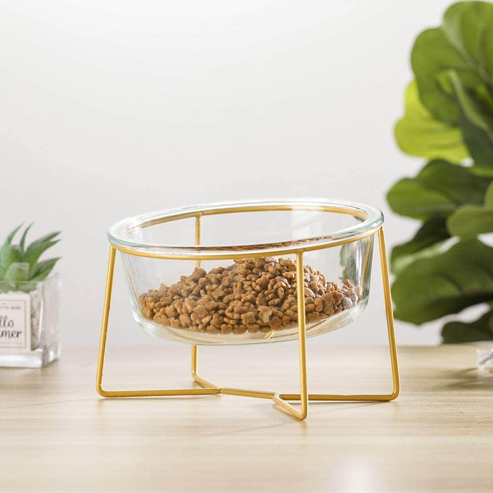 LIONWEI LIONWELI Large Glass Tilted Elevated Cat Dog Bowl