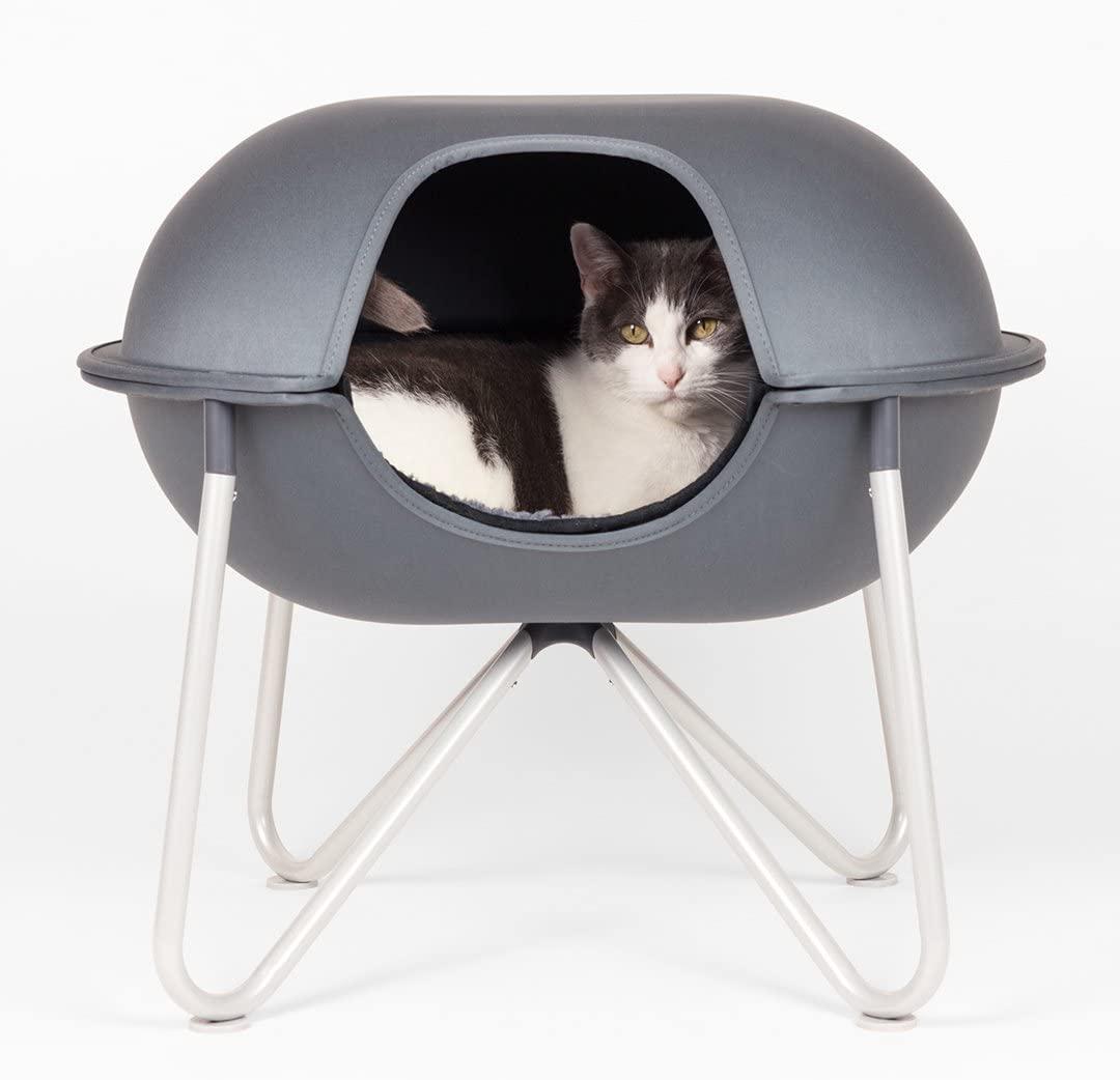 cat inside Hepper Pod Cat Bed