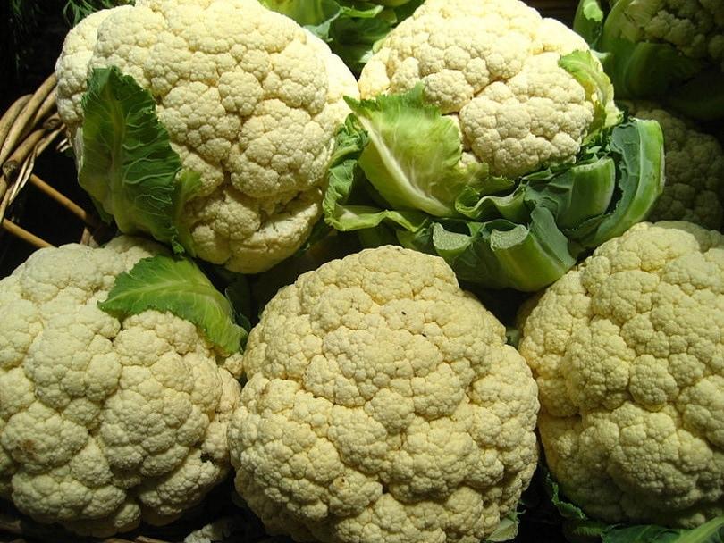 cauliflower_File Upload Bot_Wikimedia