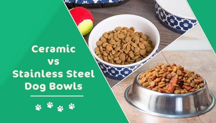 ceramic vs stainless steel bowls