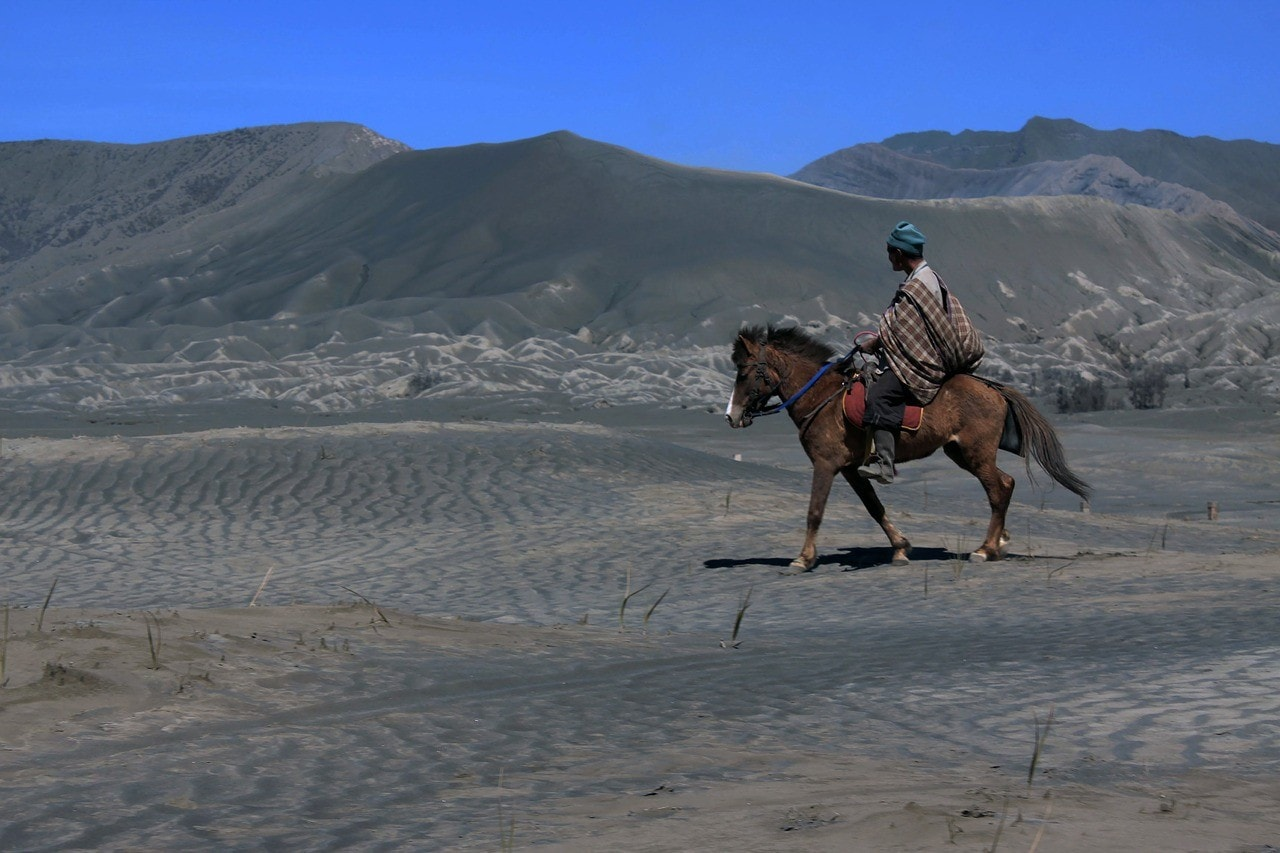 man riding a horse in the desert