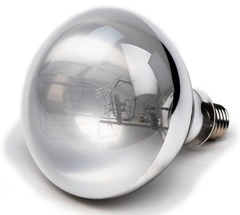 Evergreen Pet Supplies UVB Mercury Vapor Bulb