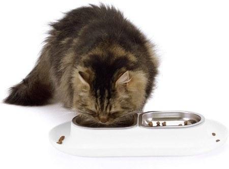 Hepper Nomnom Stainless Cat Bowl