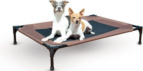 K&H dog bed_Chewy