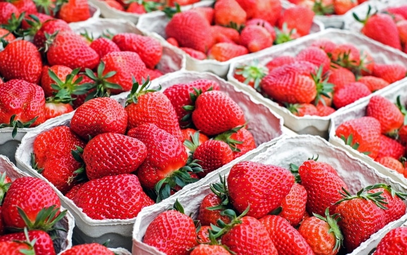 chilled strawberries_ Couleur_Pixabay