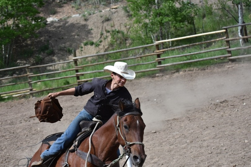 cowboy and horse_esrlaw_Pixabay