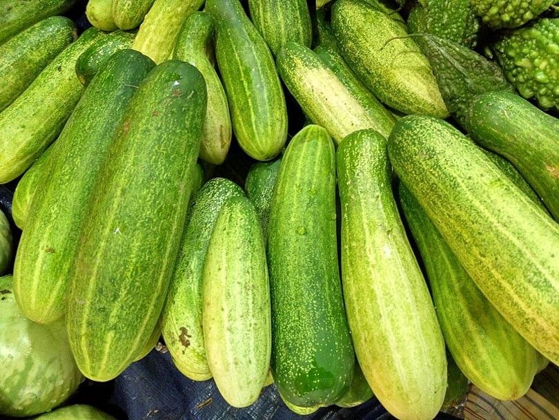 cucumbers2_Salim Khandoker_Wikimedia